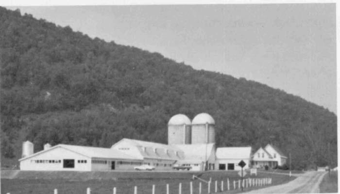 The Martin Farms.jpg