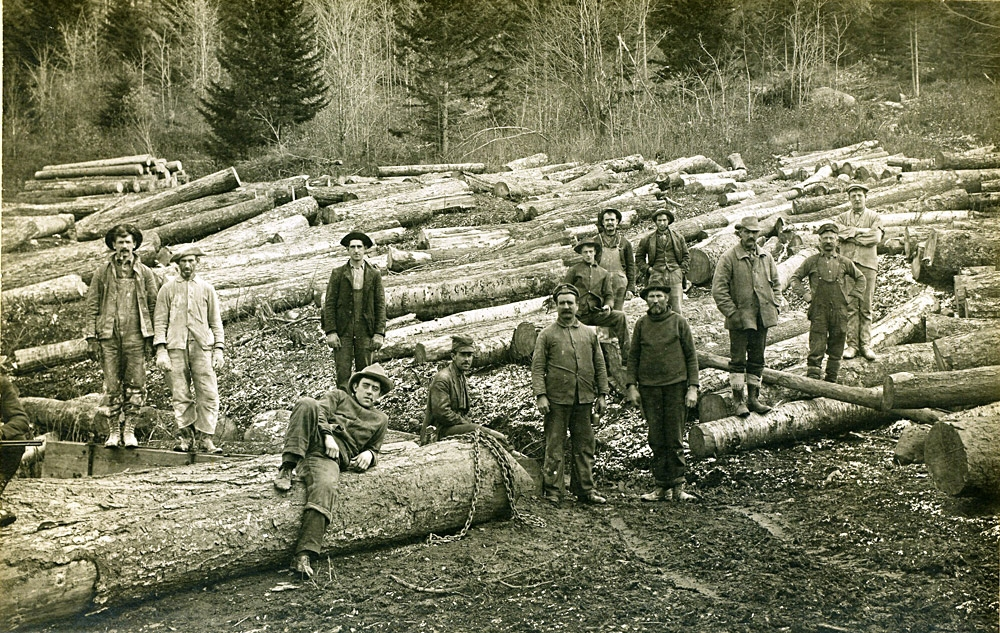 logging-expo.jpg