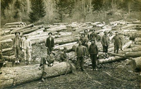 logging-expo.jpg